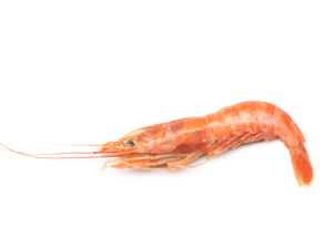 Argentinian red shrimp. Head on shell on. HOSO