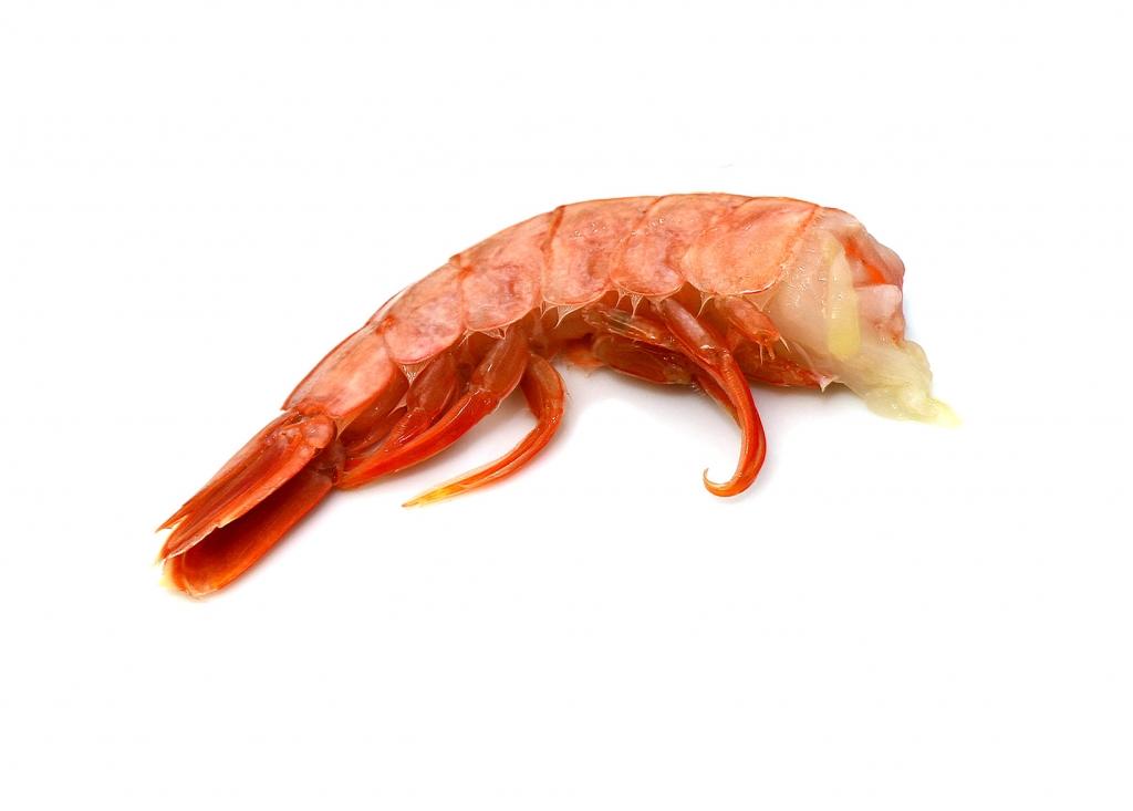 Cabo Vírgenes - Argentine Red Shrimp Tail