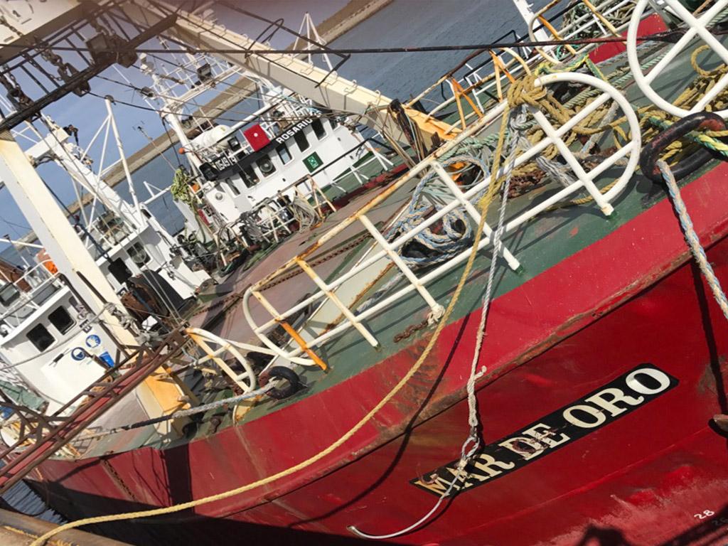 """Nuestra flota: El """"Mar de Oro""""."""