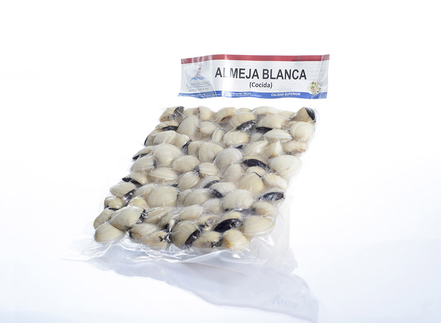Almeja Blanca de Vietnam